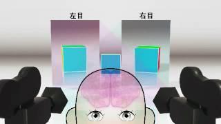 体感型実験装置群「光」7/15 光の科学2 3Dについて