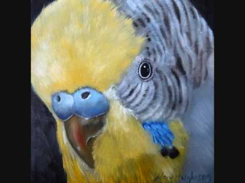 Bird Pet Portrait Oil Paintings by Mary Hughes