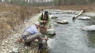 Awesome Trout Fishing at Hatchery Creek