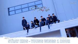 Stray kids (스트레이 키즈) - 3rd track in mixtape album release date: 2018.01.08 genre: rap / hip-hop, ballad, dance, electronica language: korean all rights to jy...