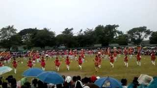 Quezon Day 2013 MSEUF Catanauan Drum and Lyre Band