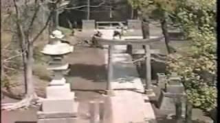 Ninjutsu Grand Master Masaaki Hatsumi in Action Pt. 1