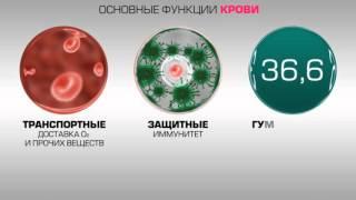 видео Anti HCV (антитела к гепатиту)положительный, отрицательный – что это значит?