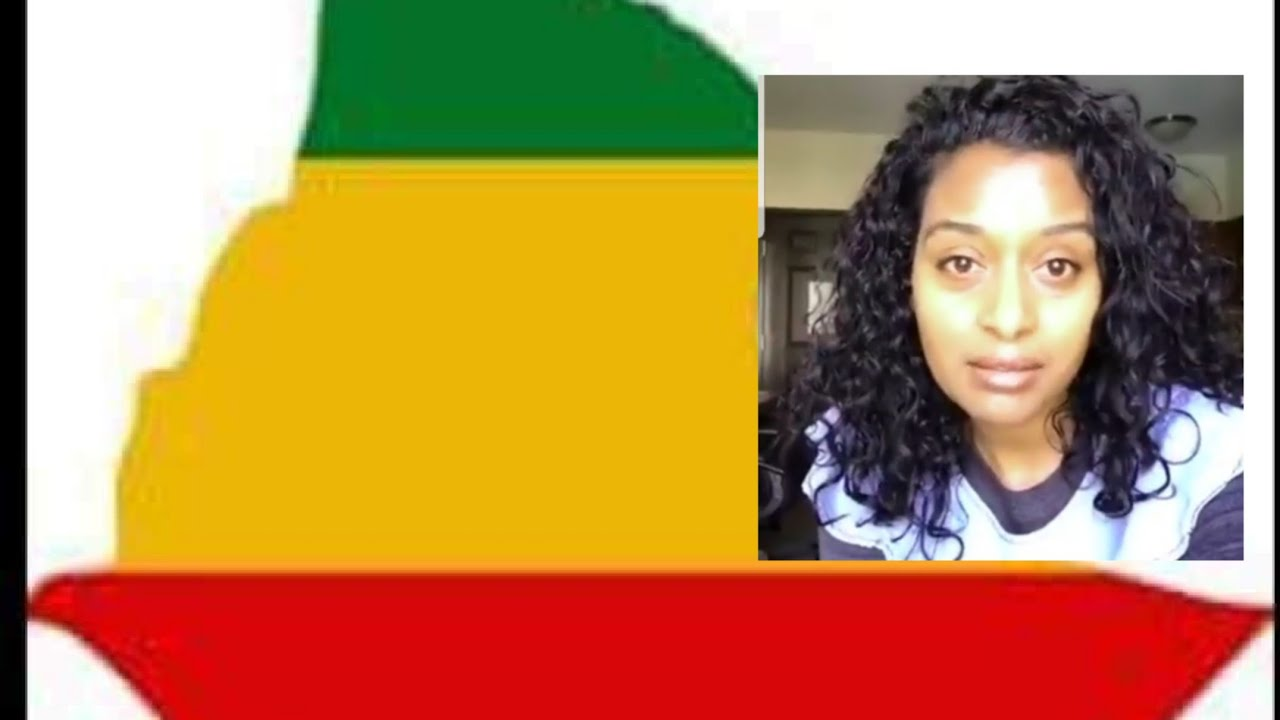 Ertrian Activist rejected old Ethio-Amhara( green,Yellow and red) flag.