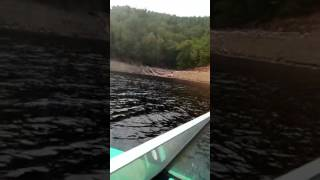 Лодка мкм- вихрь30(винт280),4 человека+собака+ бутор,скорость по навигатору 33
