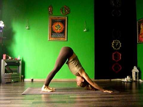 ashtanga vinyasa yogasurya namaskara amariasana  youtube