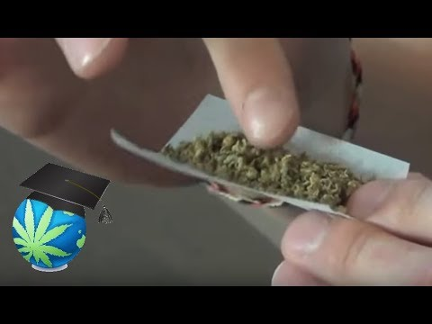 How To Roll A Joint (Step By Step Visual)