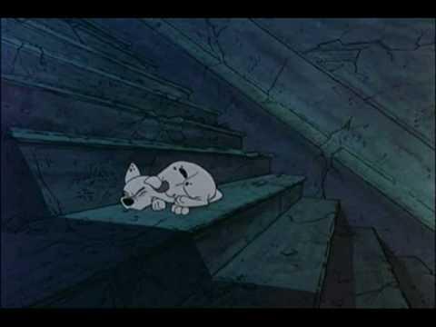 пропала собака -