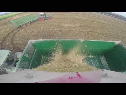 Westover Farm Contractors maize 2017