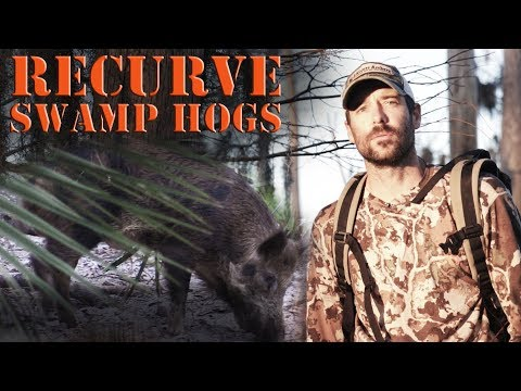 Bowhunting Public land Wild Hogs with Recurve Selfbow