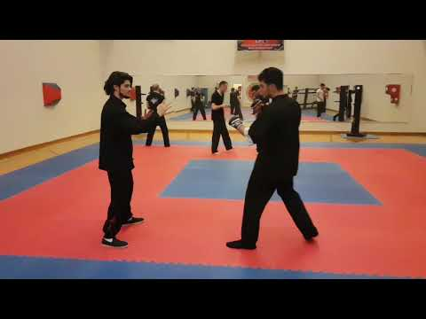 Wing Chun - Sanshou