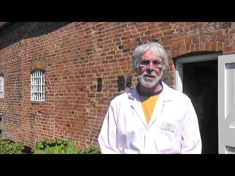 Volunteering at Birmingham Museums