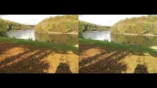 Le Val Joly - L'Orbay - 3D vision croisée
