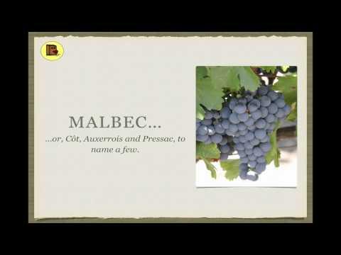 Winecast: Malbec