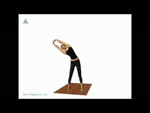 yoga for back paintiryaktadasanatiriyakatadaasana
