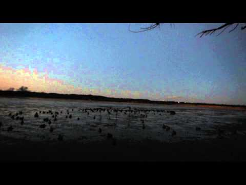 Ohlahoma Duck Hunt - thats what I'm talkin about