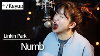 (+7 key up) Numb - Linkin Park cover | Bubble Dia