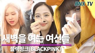 블랙핑크(BLACKPINK), 새벽을 여는 여신들의 귀요미 BLACKPINK departure in Gimpo airport - RNX tv