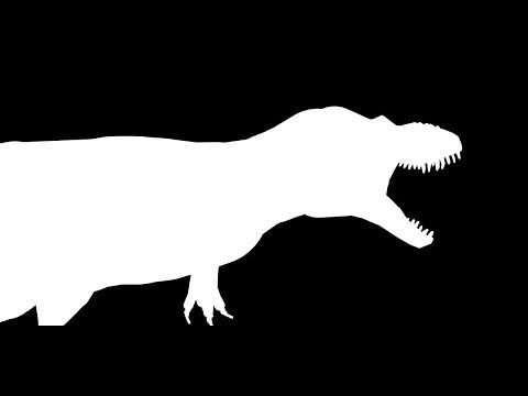 Daspletosaurus Showcase