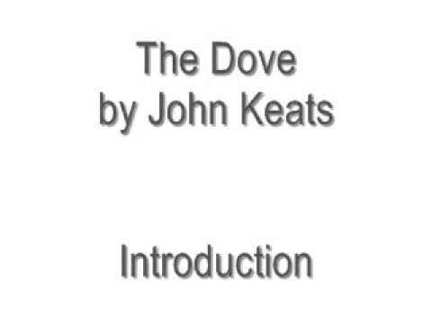 The Dove by John Keats
