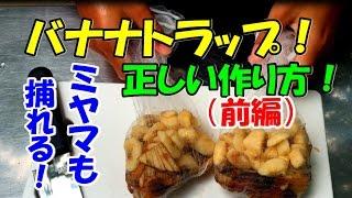 クワガタムシとカブトムシ(nokogirin:ノコギリン )です。 バナナトラ...