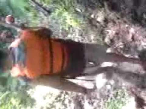 Demak timur 7 Goyang Probolinggo - YouTube