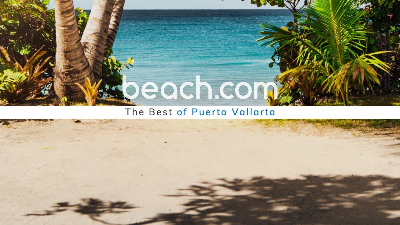 Things To Do in Puerto Vallarta   Beach.com