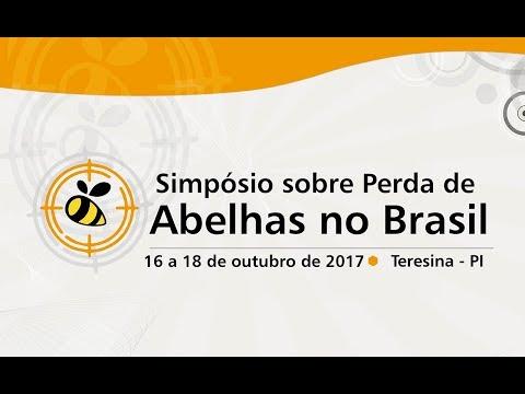 Simpósio sobre Perda de Abelhas no Brasil - dia 17/10 Manhã