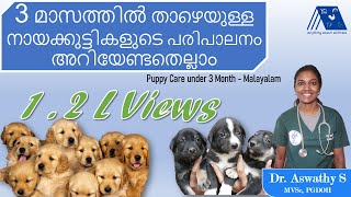 Puppy Care below 3 Months  Malayalam | Dr. Aswathy | Dog Care 1 | Anything About Animals