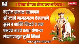 दिगंबरा दिगंबरा श्रीपाद वल्लभ दिगंबरा  - Digambara Digambara Shripad Vallabh Digambara- Sumeet Music