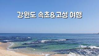 [여행 브이로그] 구.속초주민의 강원도 속초&고…