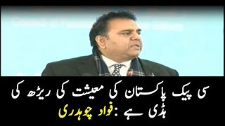 Federal Minister for Information and Broadcasting Fawad Chaudhry addressing a convention