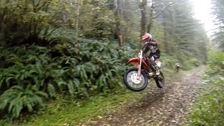 TnA Moto Films - Breaking in the crf250 with Carsen up in the Hills, Trask Oregon