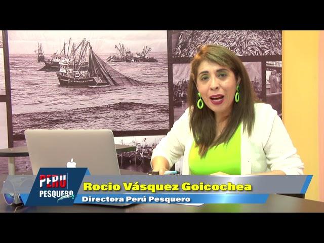 En Tumbes y Piura: Embarcaciones atuneras de Ecuador ingresan como