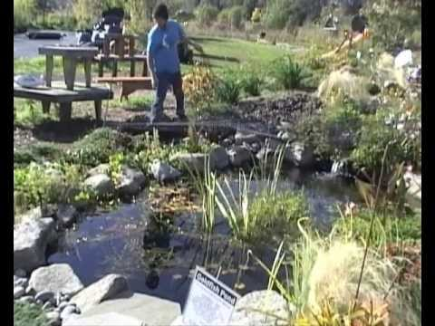 How-To Net Your Pond - YouTube