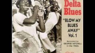 Walter Miller Vicksburg Blues (1967)