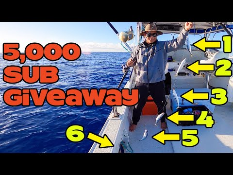 NASA Engineer Goes Fishing In Hawaii | Live Bait | Reef Fishing | Fishing In Hawaii | Hawaii Fishing