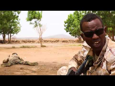 DFN:Rapid Intervention Battalion Training DJIBOUTI 07.19.2018