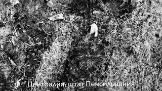 Поход по Централии - Эпизод фильма - Следопыт ТВ