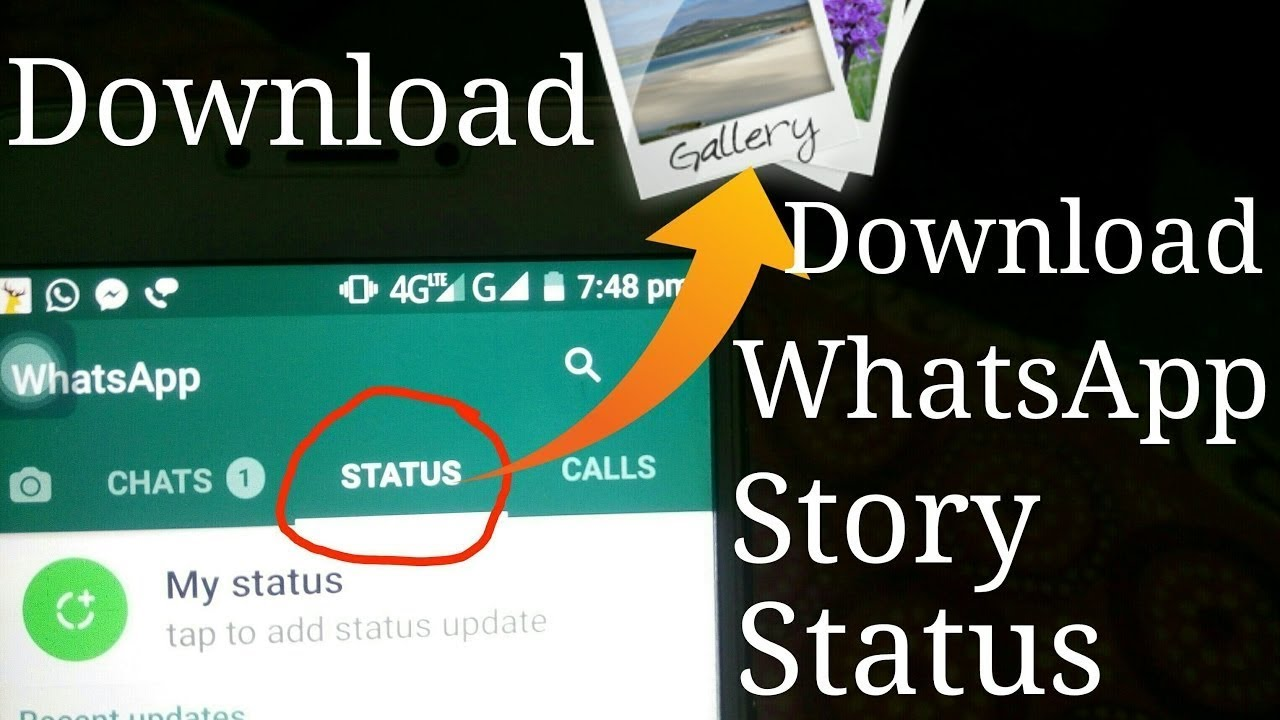 How To Download Others Whatsapp Status