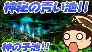 【たこらいす】神の湖!?北海道探訪記!!(´▽`)/【摩周湖 神の子池】