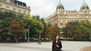 Будапешт ВЛОГ ♡ Рынок Антиквариата!(Гуляем по Будапешту! Идем на балет
