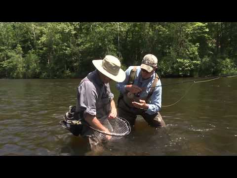 Fly Fishing The Farmington For Trout | S14 E1