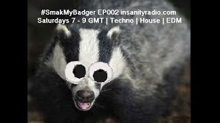 SmakMyBadger on insanityradio.com #002 | Techno