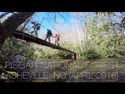 Backpacking near Asheville, NC | Pisgah National Forest (April 2016)