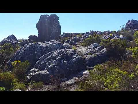 Osmo Mobile footage from Table Mountain, Cape Town, South Africa