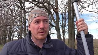 видео Интересное о гнездовании птиц: гнезда для голубей, их размер и строительство