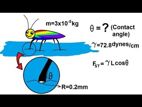 Physics - Mechanics: Fluid Statics (3 of 12)The