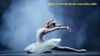 #Лебединое озеро балет. Swan Lake ballet. невероятное цирковое шоу Шанхай