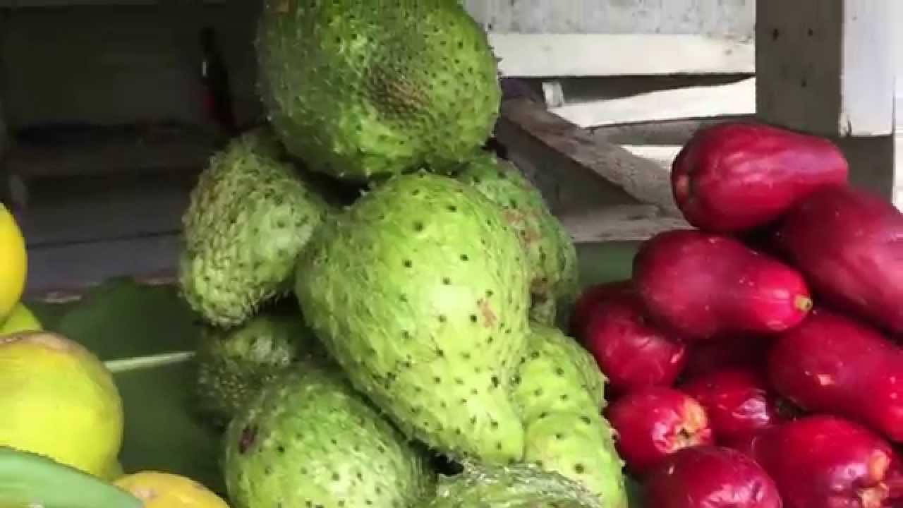 Fresh fruits in jamaica the jamerican traveler